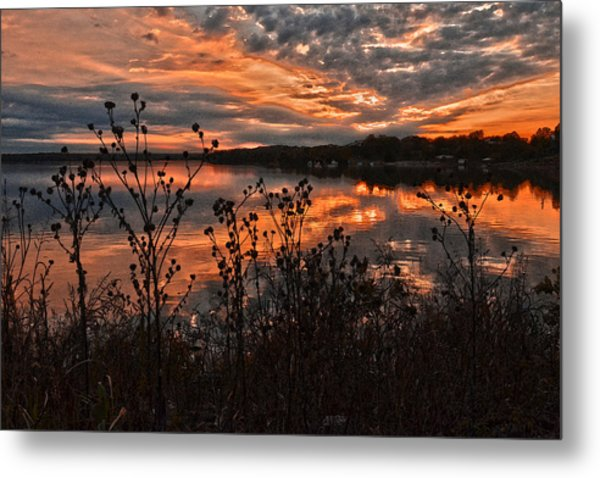 Gainesville Sunset 2386w Metal Print