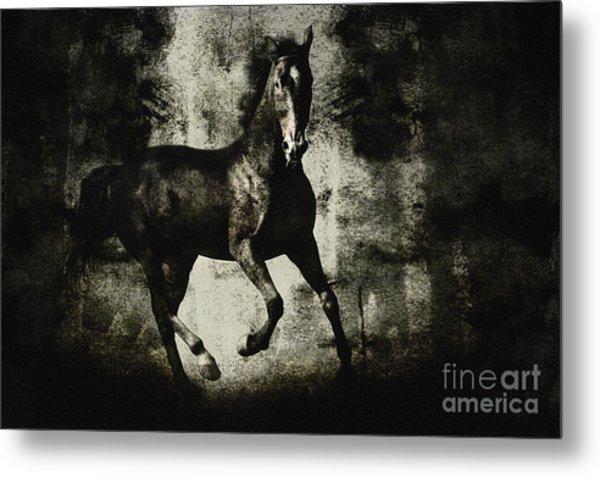 Galloping Horse Artwork Metal Print