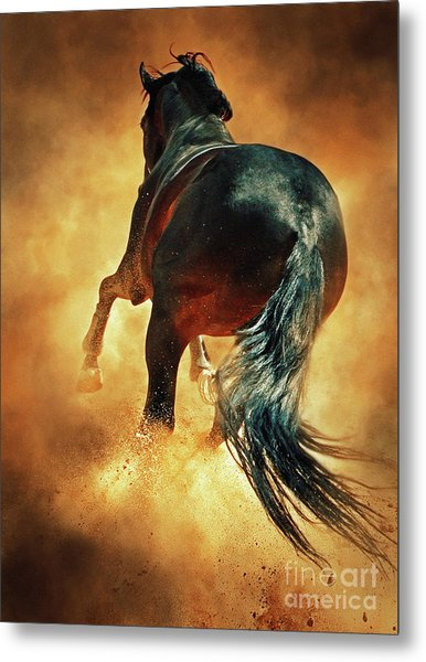Galloping Horse In Fire Dust Metal Print
