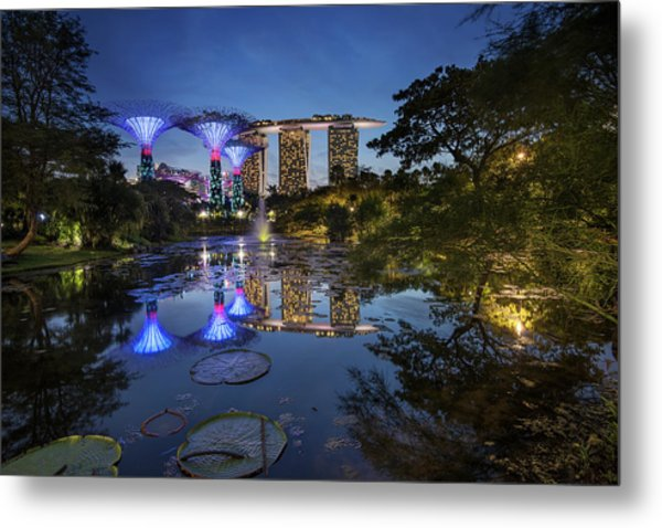 Metal Print featuring the photograph Garden By The Bay, Singapore by Pradeep Raja Prints