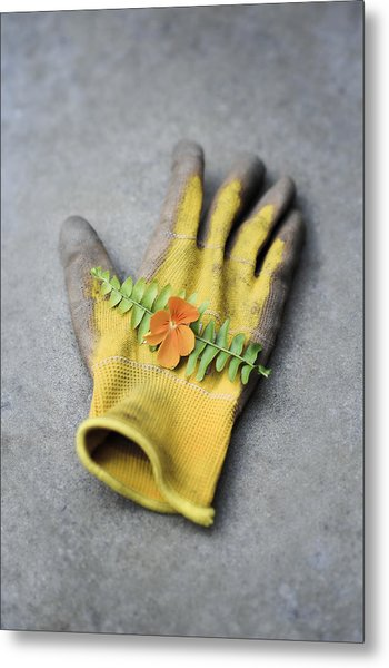 Garden Glove And Pansy Blossom2 Metal Print