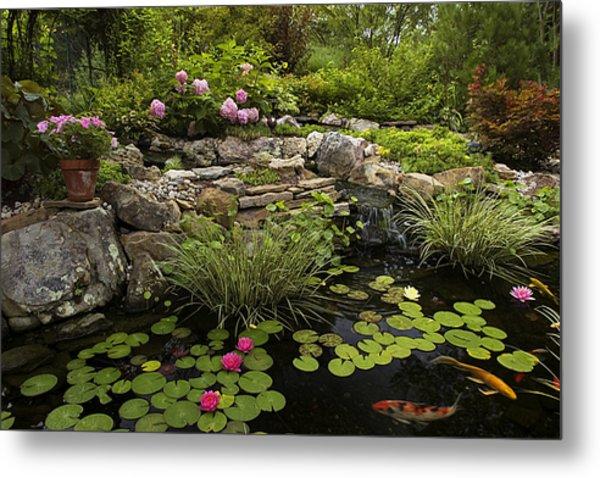 Garden Pond - D001133 Metal Print