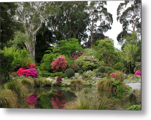 Garden Reflection Metal Print