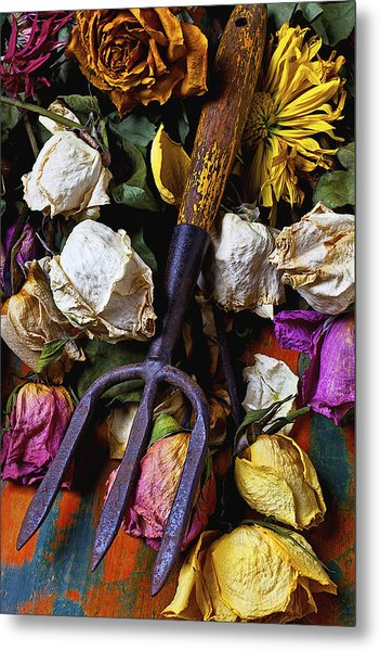 Garden Tool And Old Roses Metal Print