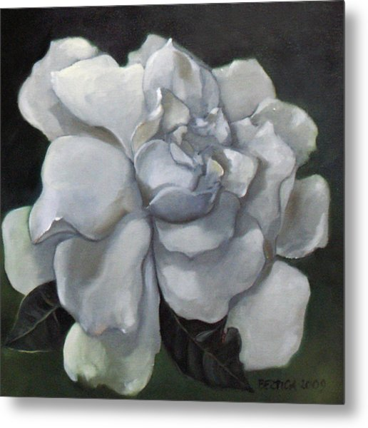 Gardenia Two Metal Print by Bertica Garcia-Dubus