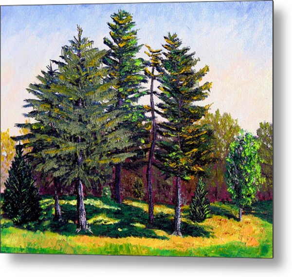 Garfield Trees Metal Print by Stan Hamilton