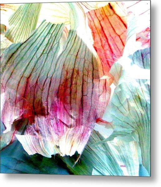 Garlic  Abstract   Series Metal Print