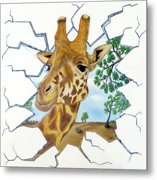 Gazing Giraffe Metal Print