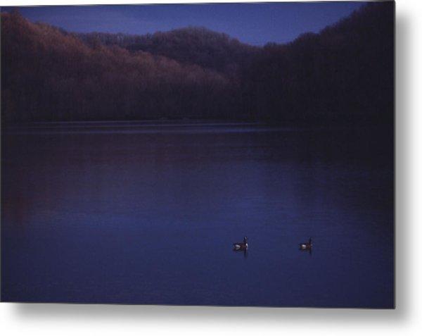 Geese On Radnor Lake Metal Print by Randy Muir
