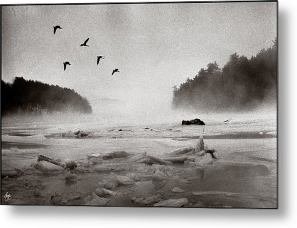 Geese Over Great Bay Metal Print