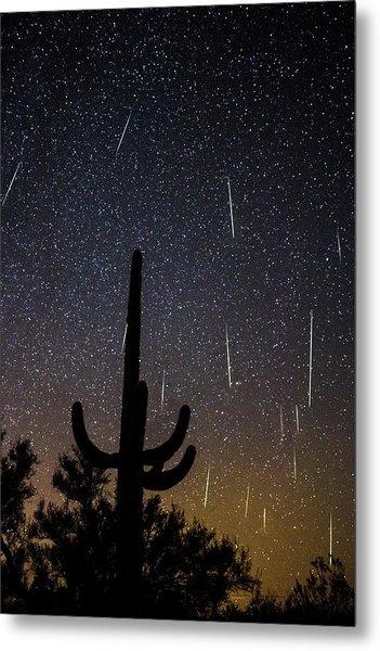 Geminid Meteor Shower #2, 2017 Metal Print