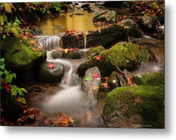 Gentle Cascades Of Autumn  Metal Print
