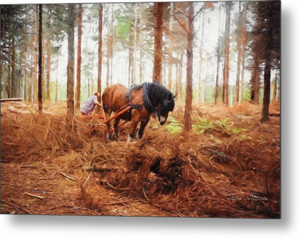 Gentle Giant - Horse At Work In Forest Metal Print