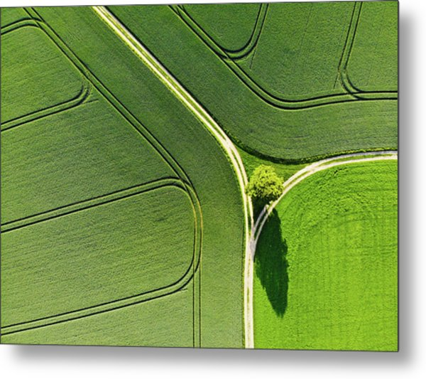 Geometric Landscape 05 Tree And Green Fields Aerial View Metal Print
