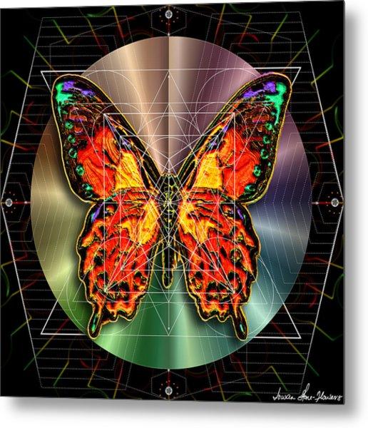 Geometron Fyr Lepidoptera Metal Print