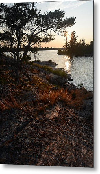 Georgian Bay Rock-wild Grass At Sunset Metal Print