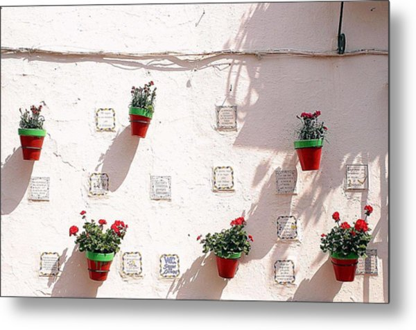 Geraniums Ganging Up Metal Print by Jez C Self