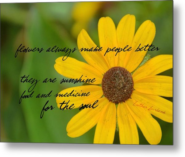 Gerber Daisy Quote Metal Print by JAMART Photography