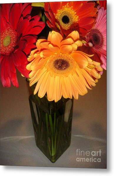 Gerbera Daisies - Vased Metal Print by Lucyna A M Green