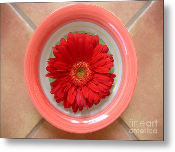 Gerbera Daisy - Bowled On Tile Metal Print by Lucyna A M Green