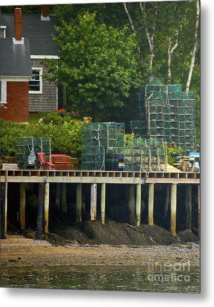 Getting Ready To Lobster Metal Print by Faith Harron Boudreau