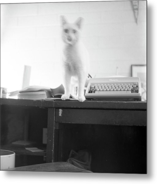 Ghost Cat, With Typewriter Metal Print