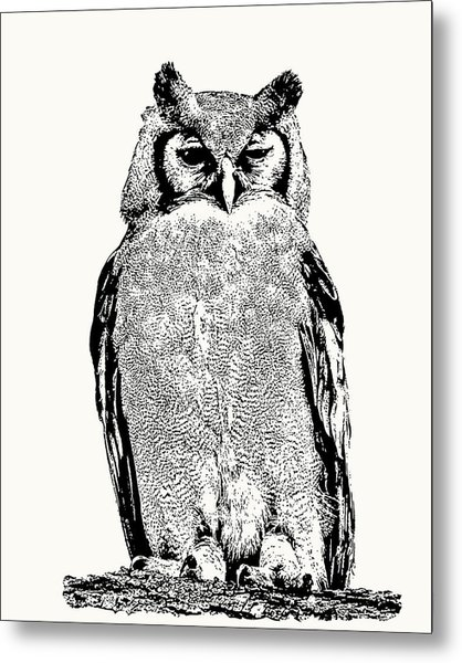 Giant Eagle-owl Perching Metal Print