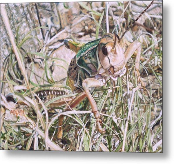 Giant Grasshopper Metal Print