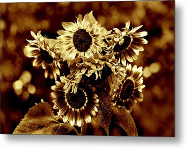 Giant Sunflowers Metal Print by Kathleen Stephens