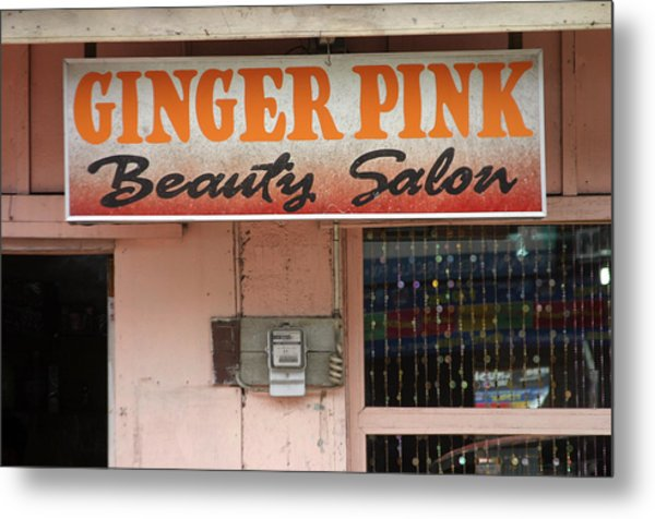 Ginger Pink Metal Print by Jez C Self