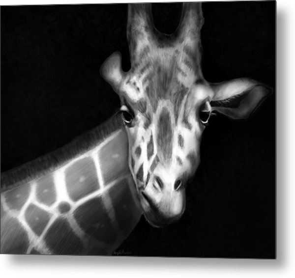 Giraffe In Black And White Metal Print