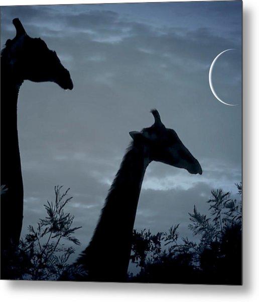 Giraffe Moon  Metal Print