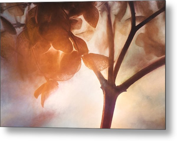 Give Thanks For The Light Metal Print