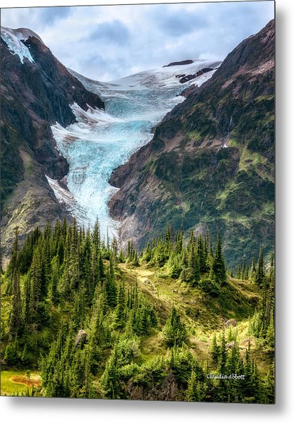 Glacier And Alpine Meadow Metal Print