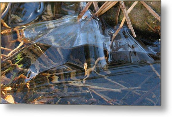 Glass Grasped Grass Metal Print by Doug Bratten
