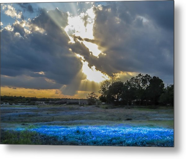 Da211 Glorious Bluebonnet Sunset By Daniel Adams Metal Print