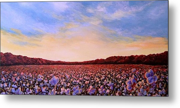 Glory Of Cotton Metal Print