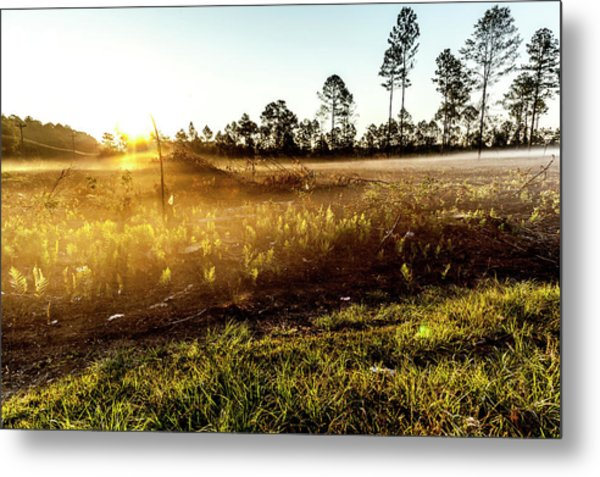 Metal Print featuring the photograph Glow by Eric Christopher Jackson