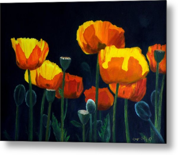 Glowing Poppies Metal Print