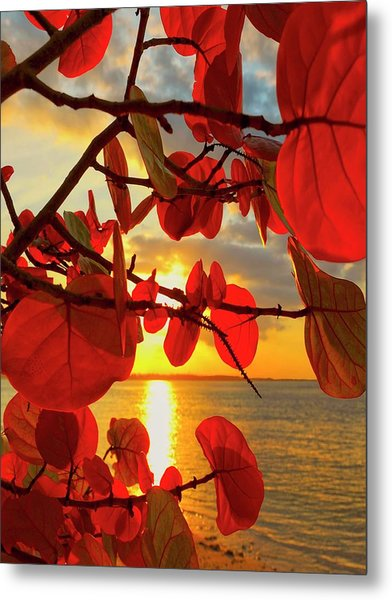 Glowing Red Metal Print