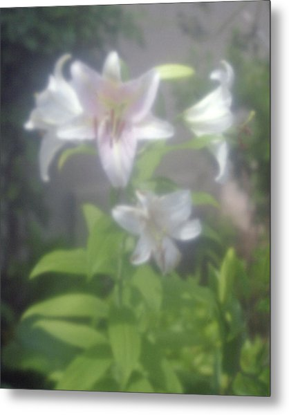 Glowing Spring Metal Print