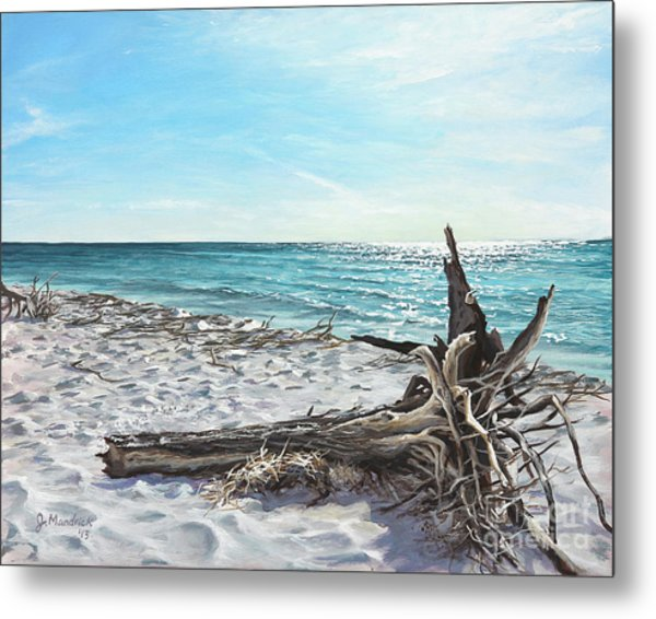 Gnarled Drift Wood Metal Print