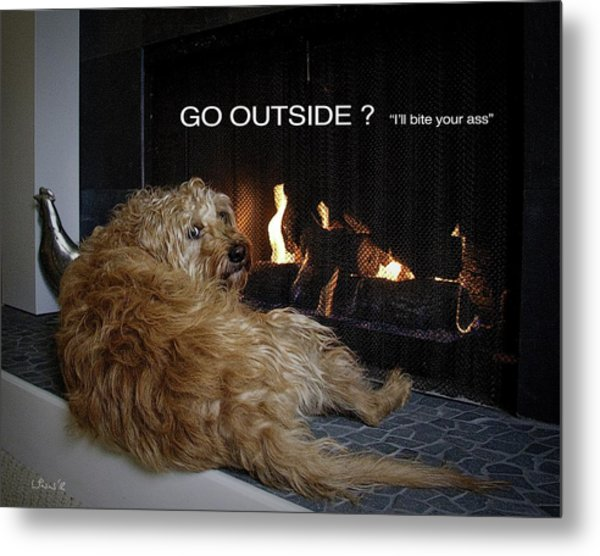 Go Outside ? Metal Print