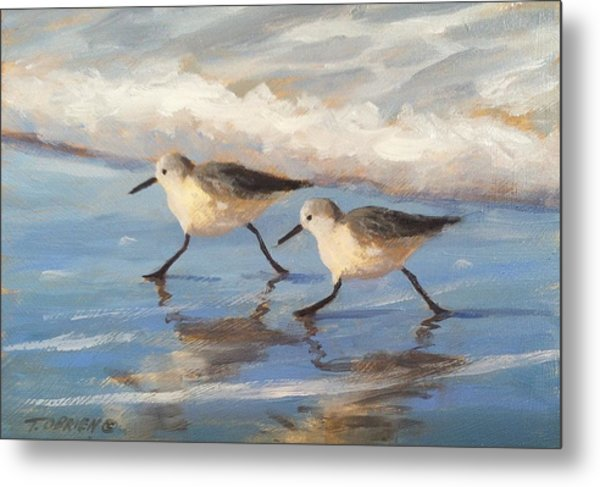 Go Sandpipers Metal Print by Tina Obrien