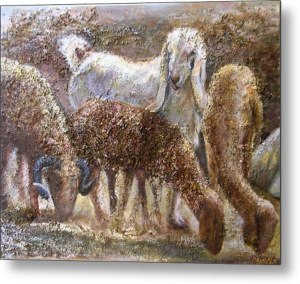Goat With Sheep Metal Print by Sylva Zalmanson