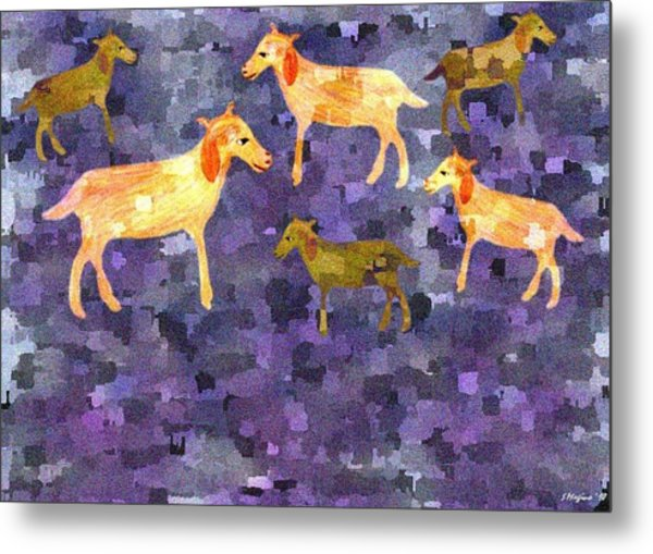 Goats In The Field Metal Print by Sher Magins