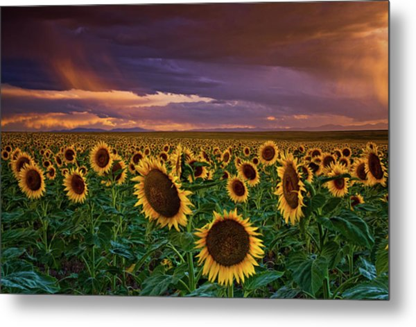 God's Painted Sky Metal Print