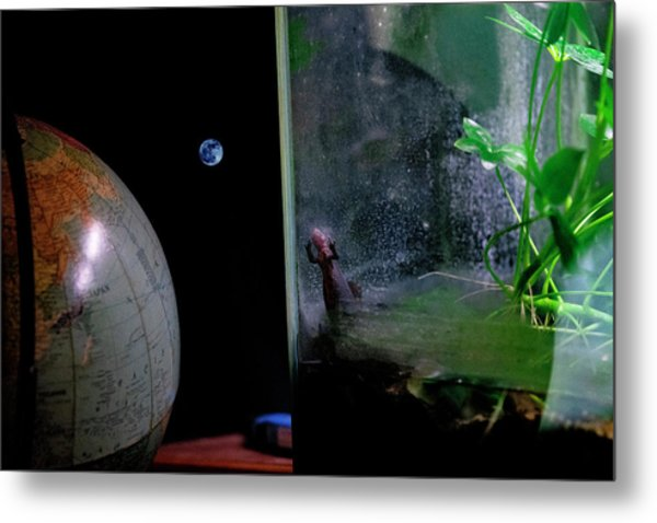 Godzilla Watches And The Moon Is Blue Metal Print