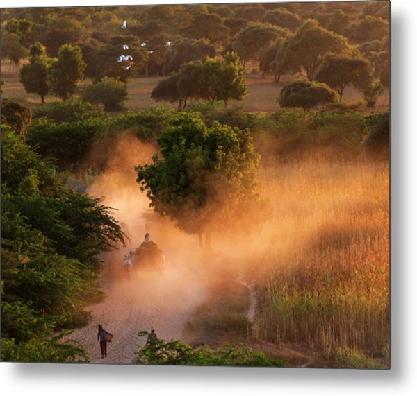 Metal Print featuring the photograph Going Home At Sunset by Pradeep Raja Prints