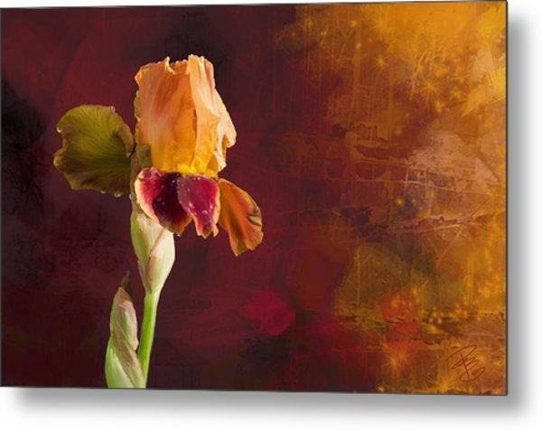 Gold And Red Iris Metal Print